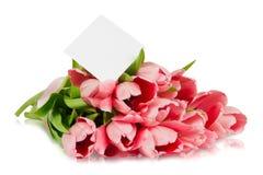 与缎丝带和明信片的桃红色郁金香 免版税库存图片