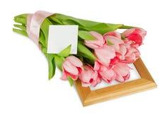 与缎丝带的桃红色郁金香在与明信片的木制框架 免版税图库摄影