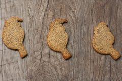 与罂粟种子的三只曲奇饼鸟 免版税库存图片