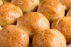 与罂粟种子的家制面包小圆面包 免版税库存照片