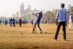 与网球的蟋蟀比赛 免版税库存图片