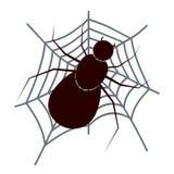 与网的可怕蜘蛛昆虫 图库摄影
