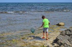 与网的男孩渔在岩石 库存图片