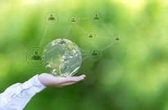 与网络系统的地球地球在抽象绿色背景的男性棕榈 库存图片