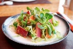与罕见的油煎的金枪鱼和三文鱼的开胃菜 免版税库存图片