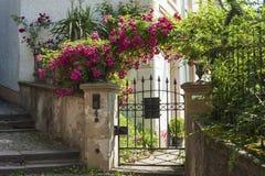 与罗斯灌木的庭院门在城堡台阶在Baden-Baden 免版税库存图片