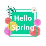 与美丽的五颜六色的花的春天背景 库存照片