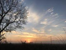 与美丽的天空树和云彩的日出 库存照片