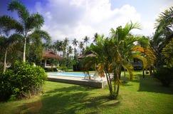 与美丽的庭院的热带手段 库存图片