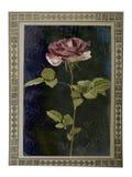 与美丽的桃红色玫瑰的老纸葡萄酒卡片 免版税图库摄影