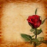 与美丽的桃红色玫瑰花束的老葡萄酒卡片  库存照片