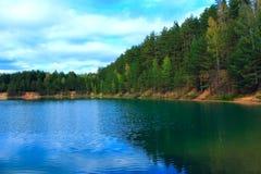与美丽的湖的风景在森林里 免版税库存图片