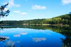 与美丽的湖的风景在森林里 库存图片