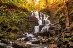 与美丽的瀑布的森林风景在山河小河落下秋天山毛榉森林喀尔巴汗,乌克兰,欧洲 免版税库存图片