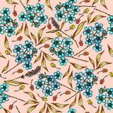 与美丽的花勿忘草和叶子的花卉样式 与五颜六色的植物的夏天样式 无缝五颜六色 皇族释放例证