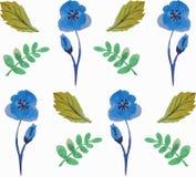 与美丽的花和叶子的无缝的花卉样式在蓝色和绿色 水彩 免版税库存图片