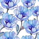 与美丽的花的无缝的样式 库存图片