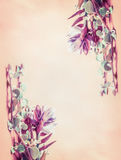 与美丽的花的花卉框架在米黄背景 库存图片