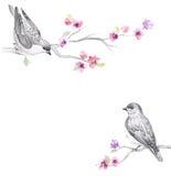 与美丽的花的花卉水彩背景 免版税库存图片