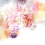与美丽的花的花卉水彩背景 免版税库存照片