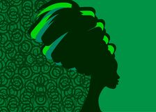 与美丽的长的头发女孩,黑人妇女剪影的发型概念 美容院的设计观念,温泉,化妆用品, 库存例证