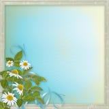 与美丽的雏菊的Grunge框架 库存图片