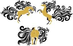 与美丽的鬃毛和尾巴的马 免版税图库摄影