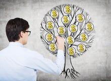 画与美元的符号的一棵树在混凝土墙上年轻专家的背面图  财富和行业的概念 库存照片
