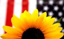 与美国国旗的黄色向日葵 库存图片