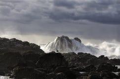 与美好的光的风雨如磐的海景 库存图片