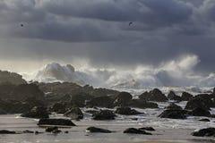 与美好的光的风雨如磐的海景 免版税库存图片