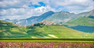 与美好的夏天风景,翁布里亚,意大利的著名Castelluccio二诺尔恰 库存照片