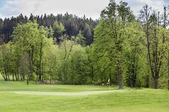 与美好的捷克高尔夫球场的风景 免版税库存照片