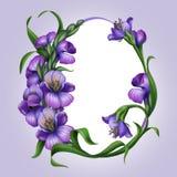 美丽的淡紫色春天花。 复活节彩蛋框架 免版税库存照片
