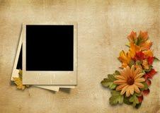与美好的秋天装饰的葡萄酒照片框架与地方为 库存图片