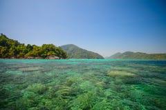 与美好的coralscape的潜航的点在素林国民打标准数 免版税库存照片