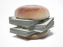与美金的汉堡 免版税库存照片