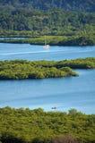 与美洲红树小岛的热带风景 库存照片