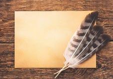 与羽毛和纸的静物画 库存照片