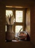 与羽毛的葡萄酒stilllife在水罐和莓果在窗口 免版税库存图片
