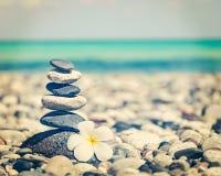与羽毛花的禅宗平衡的石头堆 库存图片