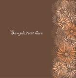 与翠菊的减速火箭的花卉无缝的边界 免版税库存照片