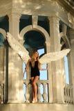 与翼的天使 库存照片