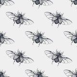 与翼葡萄酒无缝的样式的甲虫 库存照片