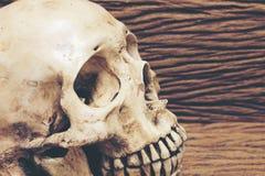 与老人的头骨的静物画摄影在木背景的黑暗的葡萄酒口气 免版税图库摄影