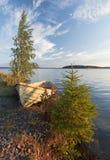 与老划艇和结构树的早晨横向 库存图片