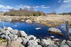 与老地标的瑞典春天风景 免版税图库摄影