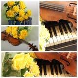 与老小提琴和黄色玫瑰的拼贴画 免版税库存照片