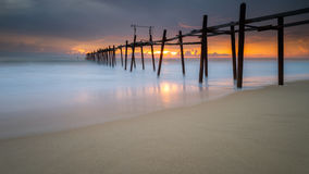 与老木bridg的海海滩 免版税库存照片