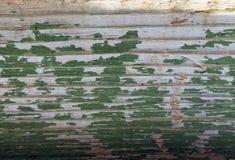 与老油漆小块片断遗骸的老木背景在木头的 一棵老树的纹理,与油漆的板 图库摄影